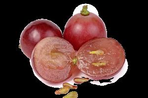 panasource-usa   Grape Seed