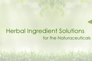 Standardised Herbal Extracts Manufacturer and Supplier India