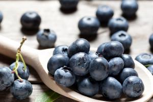 Dehydrated & Dried Blueberries | Silva International - Silva International