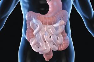 DigeSEB - Digestive Enzymes - Bloating, Gas, Milk & Soy Indigestion