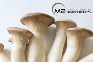 Our Partner, M2 Mushrooms | STAUBER