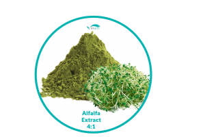 Alfalfa Extract 4:1 - Vitajoy USA
