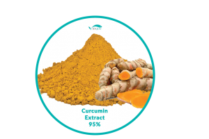 Curcumin Extract 95% - Vitajoy USA