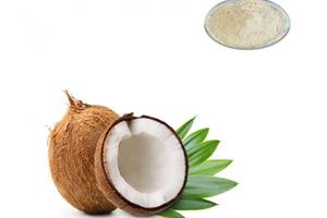 Coconut Fruit Powder - Gaoyuan Bio-Chem