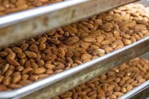 Formulation | Natural Products INSIDER
