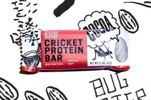 Cocoa Nut Protein Bar | Free Shipping on Orders $45+ | Exo Protein - Exo