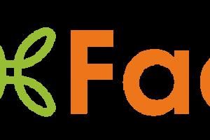 Four Factors - Healthy Marketing Team
