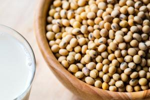 Hydrolyzed Vegetable Soy Protein - HVP Manufacturers (Buy Today)