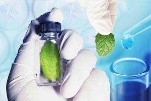 Environment & Quality Systems | Matrix Fine Sciences Pvt. Ltd.