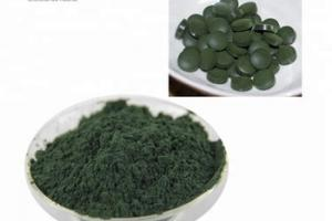 healthy and pure supplement chlorella tablet cas 84650-60-2, View healthy supplement chlorella tablet, wglife Product Details from Hainan Zhongxin Wanguo Chemical Co., Ltd. on Alibaba.com
