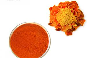 marigold flower extract powder feed grade lutein, View feed grade lutein, Product Details from Hainan Zhongxin Wanguo Chemical Co., Ltd. on Alibaba.com