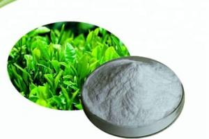 Organic Green Tea Extract l-theanine Powder, View green tea extract l-theanine, WG Life Product Details from Hainan Zhongxin Wanguo Chemical Co., Ltd. on Alibaba.com