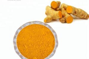 tumeric powder curcumin for health food grade, View turmeric rhizome / powder, WG Life Product Details from Hainan Zhongxin Wanguo Chemical Co., Ltd. on Alibaba.com
