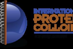 proteincs concrete5 :: About Us