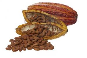 The chocolate company produces, markets and exports products derived from cocoa beans - Machu Picchu Foods