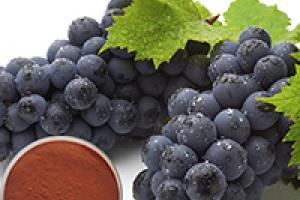 Herbal Extracts – Ashwa Naturals