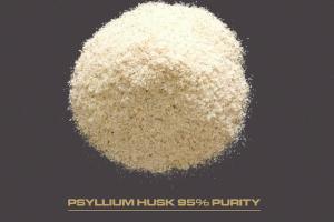 PSYLLIUM HUSK AND POWDER 95% - Organic and Traditional