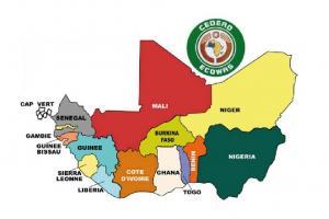 NATURAL AROMATIC INGREDIENTS AFRICA ORIGIN