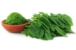 Standardized Herbal Extracts | Phytochemicals Extracts | Botanical Extracts | Personal Care Ingredients Suppliers