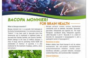 Bacopa monnieiri extract USP