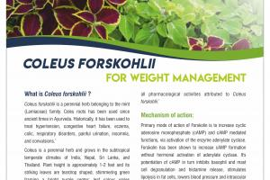 Coleus forskholii extract