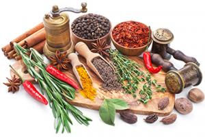 Food Ingredients Suppliers | Seasonings & Food Ingredients Manufacturer