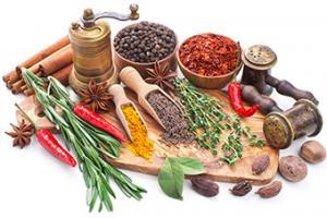 Food Ingredients Suppliers | Seasonings & Food Ingredients Manufacturer