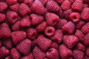Raspberry Extract