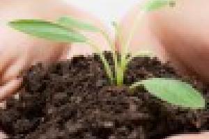Bio-Fertilizers | Ishaan Bio, Exploring the miracles of nature…