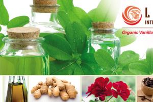 Lemur International Inc. [Essential Oils]