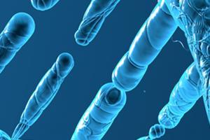 Fermentation I Bacterial genomics & genome sequencing I NIZO