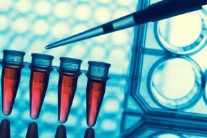 Pesticide Registration Testing | Southwest Research Institute
