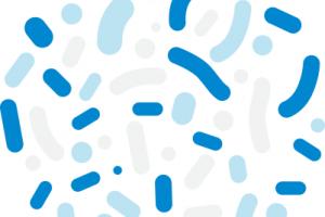 Lactobacillus acidophilus UBLA-34