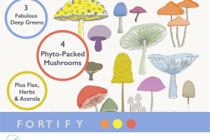 Fortify Super Mushroom Blend for Private Label Nutraceuticals